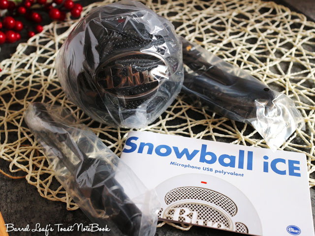 snow-ball-ice (4)