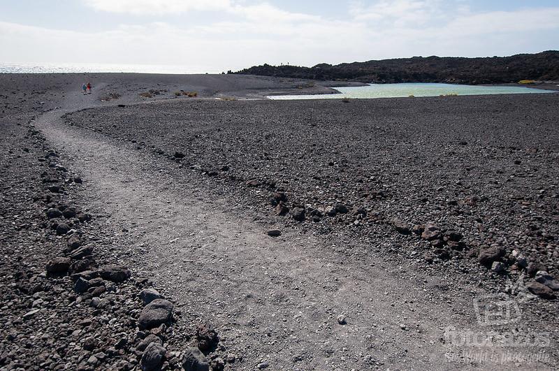 Charca verde en Playa Bermeja
