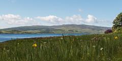Loch Scridain-8188