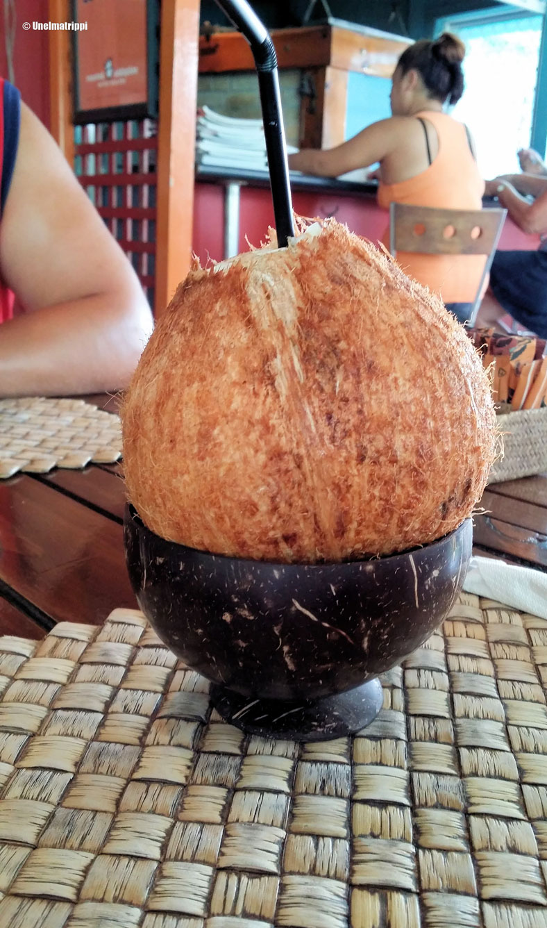 Kookosjuoma baarissa, Rarotonga, Cookinsaaret