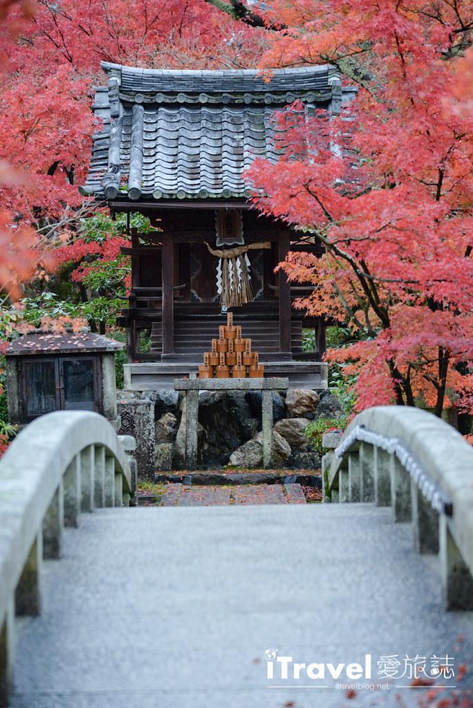 京都赏枫景点 永观堂 (56)
