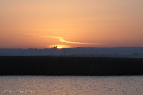 Sol naciente./ Rising sun.