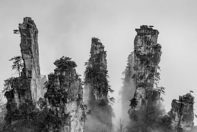 P7-石峰林-3-黑白