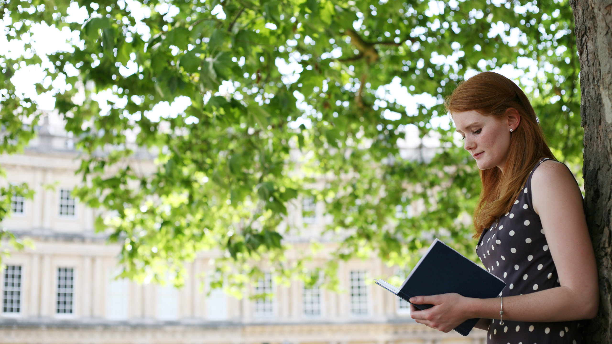 A student studies a book while leaning up against a tree in Bath's Circus