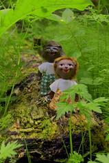 Daria Merkulova Russian Photographer | Российский Фотограф Дарья Меркулова A pair of antique hedgehog dolls - Boy & Girl