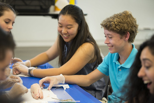 HEAL Students Participate in Clinical Diagnostic Simulation, Dermatology Workshop