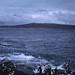 Small photo of Penguins. Jutten Island. Saldanha