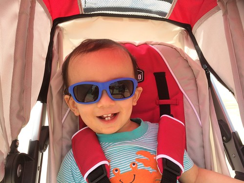 Ezra's first trip to National Harbor, MD