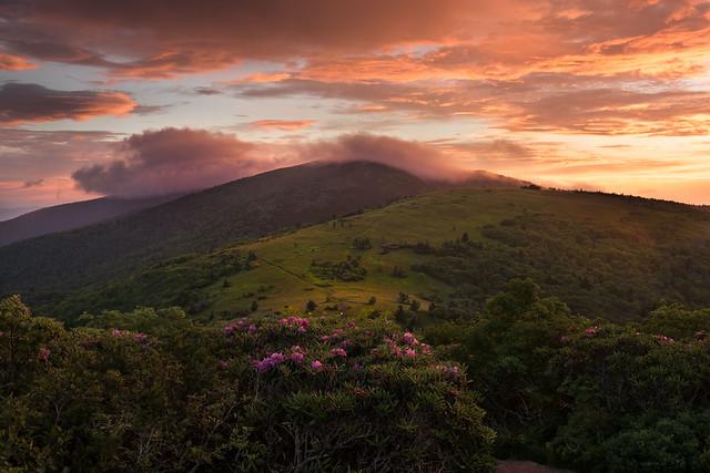 Roan Mountain, Nikon D810, AF-S Zoom-Nikkor 24-70mm f/2.8G ED