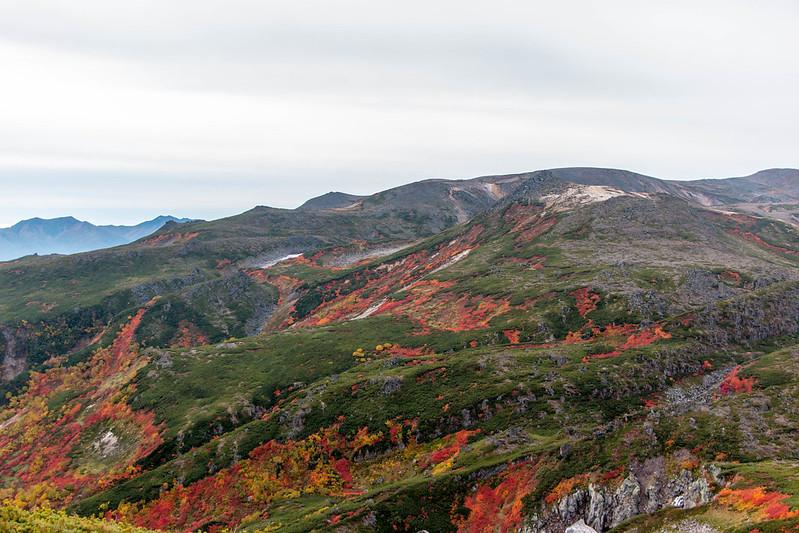 20150918-大雪山黒岳-0274.jpg