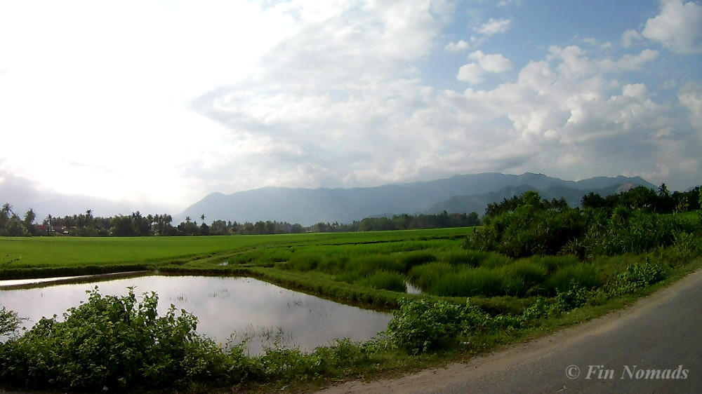 vietnamese countryside 3