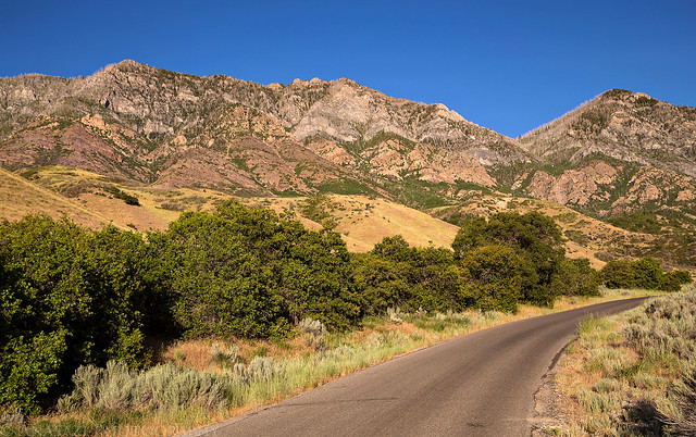 Dry Mountain View