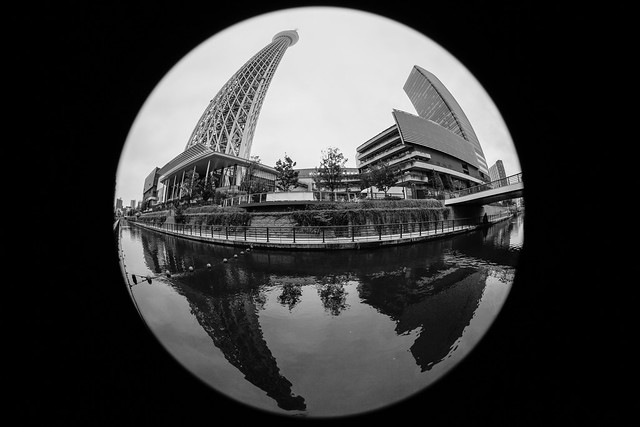 _MG_7809, Canon EOS 5D MARK II, Canon EF 8-15mm f/4L Fisheye USM