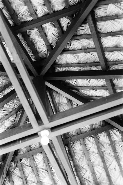 Rafters Above