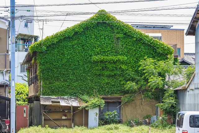 Tsuta House, Nikon 1 J5, 1 NIKKOR VR 30-110mm f/3.8-5.6