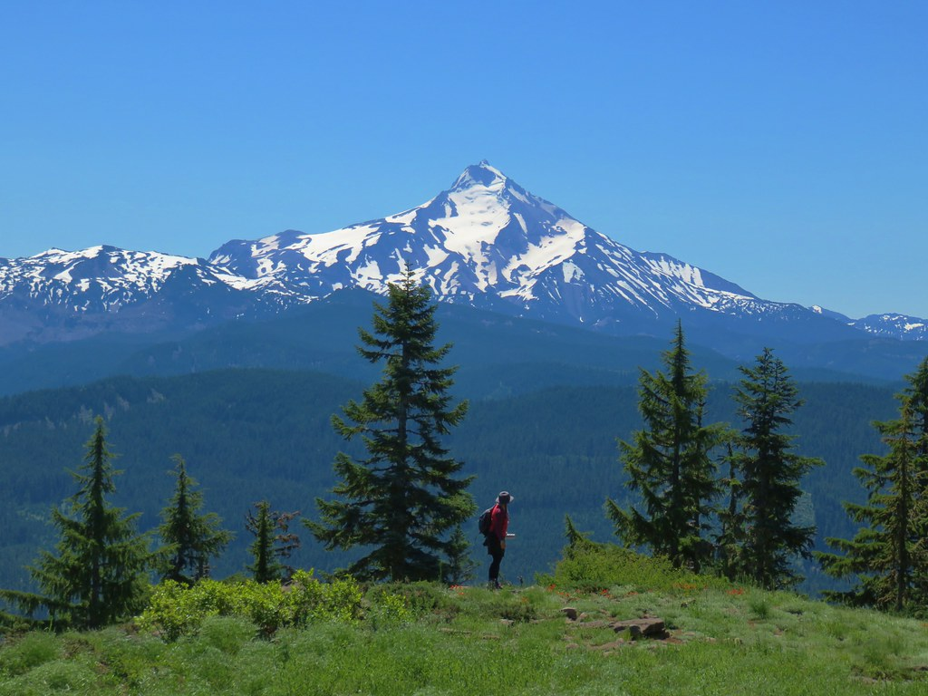 Mt. Jefferson from Hawk Mountain