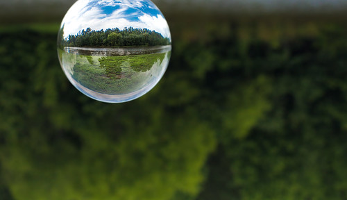 nature outdoors park shakerag sphere crystal inverted glass ball glassball crystalball orb abstract circle round distorted canon 70d 50mm