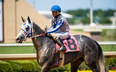 Another Grey & Jockey Ernesto Valdez Jiminez