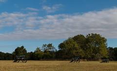 Cannons on Matthews Hill