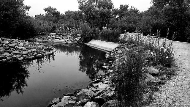 Freshwater Slough