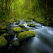 Stepping stones by Sapna Reddy Photography