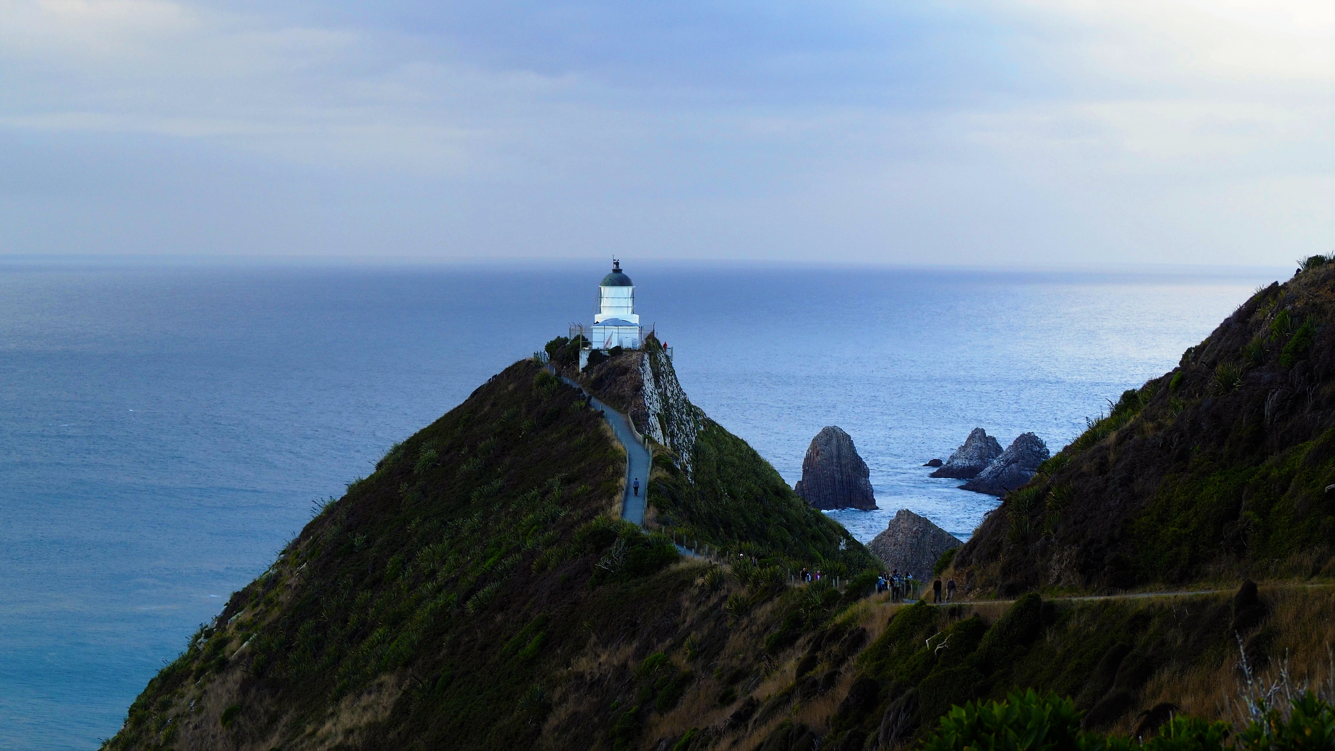 Nugget_Point_1