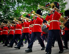 Ceremonial Guard At Rideau Hall