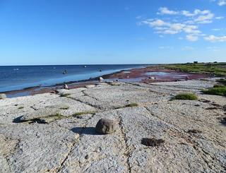 Gammalsby Coastlands (Sjomark) (2)