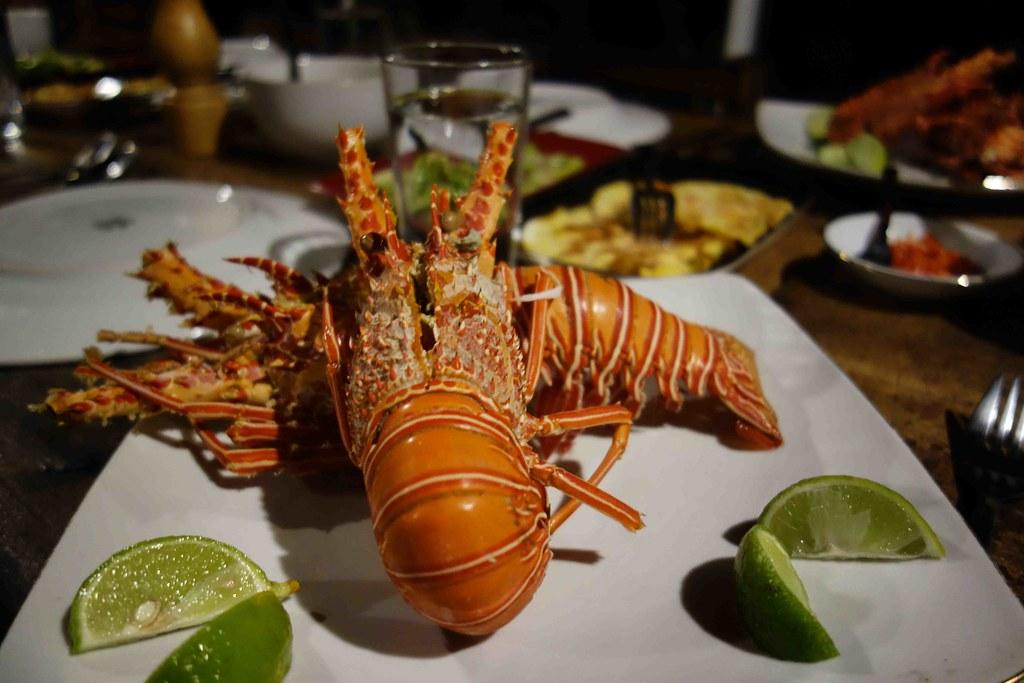 Poki Poki - Lobster 2