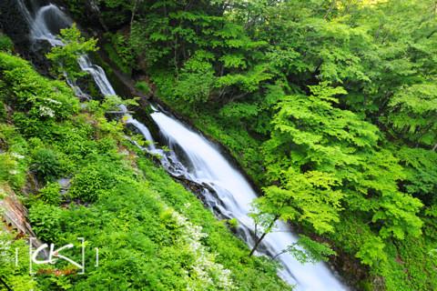 Japan_1331