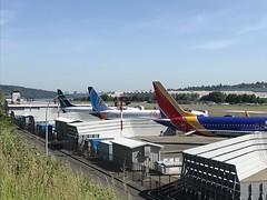 WestJet Boeing 737-8 Max C-FRAX 1A***