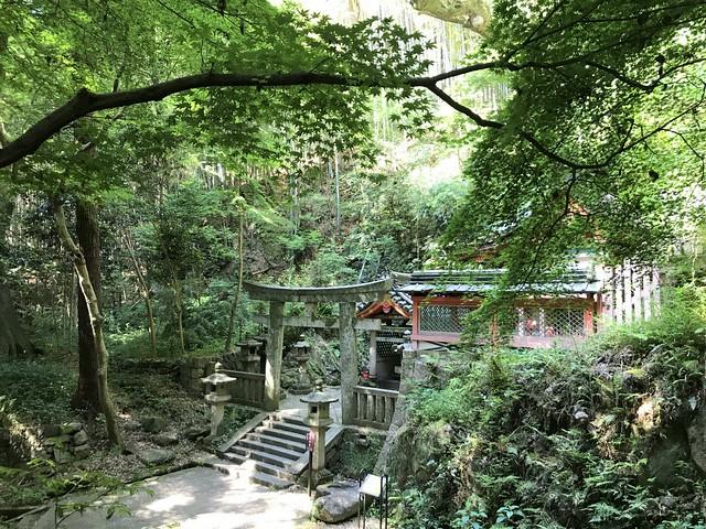 iwashimizuhatimangu141