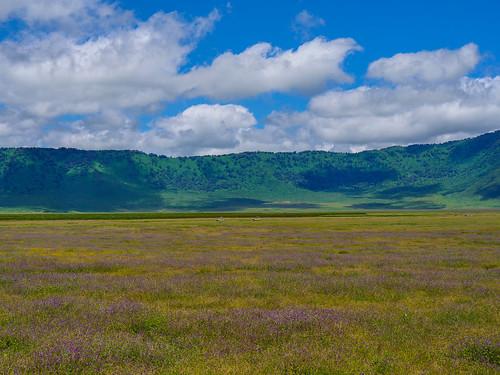 tanzanie 2017 ngorongoro paysage safari