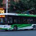 西瓜电车/Watermelon Trolleybus