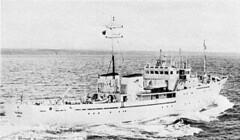 Sulisker (1981 - 2005)