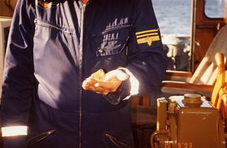 Merivartija ja pikkulintu 19.9.1993
