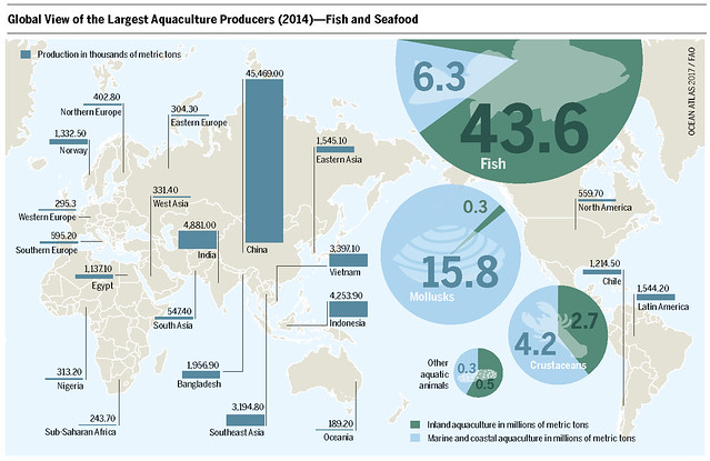 Production of fish, mollusks, crustaceans and other aquatic animals in thousands of metric tons Inland aquaculture in millions of metric tons Marine and coastal aquaculture in millions of metric tons  Graph: Ocean Atlas 2017, Petra Böckmann/Heinrich Böll Foundation