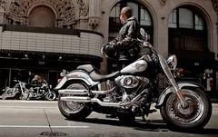 Harley-Davidson 1690 SOFTAIL FAT BOY FLSTF 2014 - 11