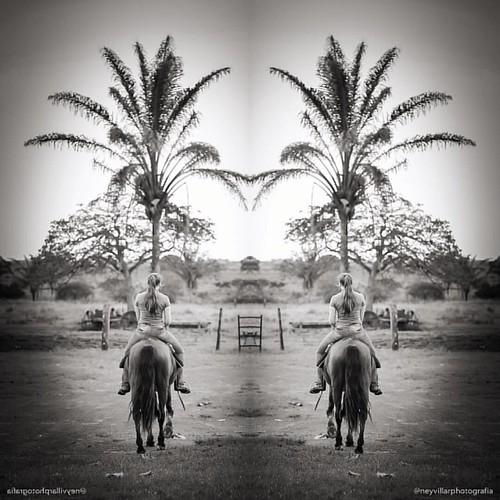 #cavalo #fazenda #natureza #neyvillarphotografia