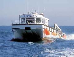 Temora (2003 - present day)