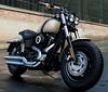 Harley-Davidson 1690 DYNA FAT BOB FXDF 2017 - 15
