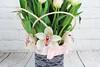 everyday-flower-arrangement-wwdreamflowerscom-18