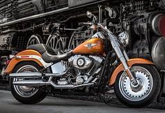 Harley-Davidson 1690 SOFTAIL FAT BOY FLSTF 2014 - 13