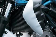 Suzuki SVF 650 GLADIUS 2010 - 3