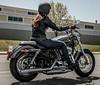 Harley-Davidson XL Sportster 1200 Custom 2013 - 17