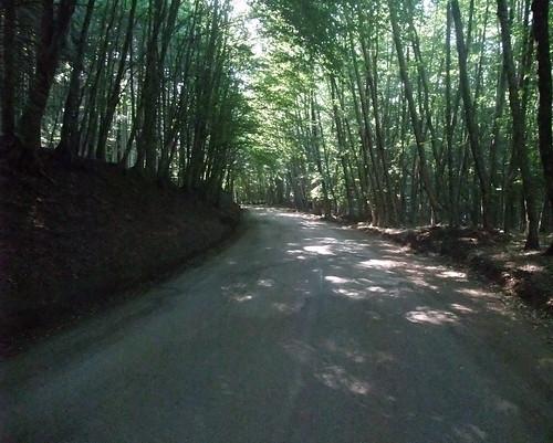 Monte Taburno (BN)