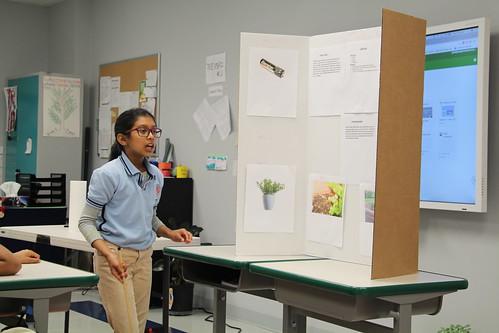 Elementary School Science Olympiad