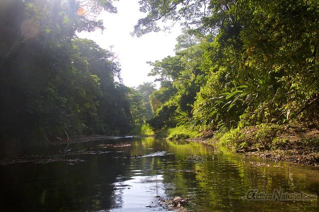 view 0004 Corcovado, Osa peninsula, Costa Rica