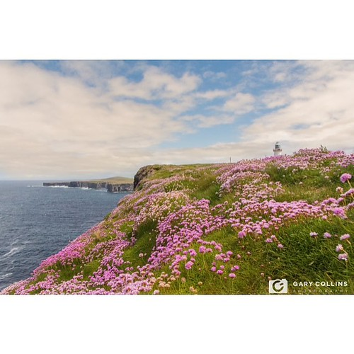 Loop Head Lighthouse | A lovely day spinning around #loophead #peninsula playing tour guide and dropping off fresh print stock to @kilbahagallery #clare #landscape #landscapephotography #landscapelover #seapinks #cliffs #atlanticocean #wildatlanticway #di