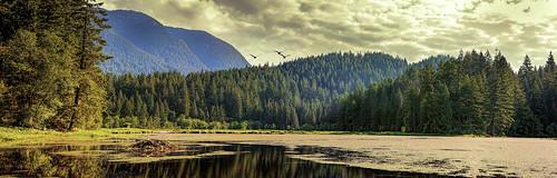 canada britishcolumbia coquitlam minnekhadapark panorama